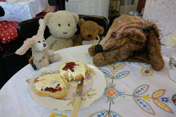 Kasimir, Cäsar, Fredi und Kerl essen Scones im Cinderellas in Shanklin