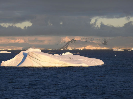 die Antarktis - die Pünktchen? Pinguine!