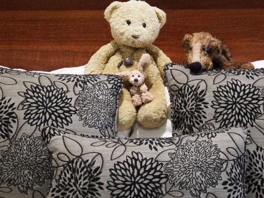 unsere erste Schlafstatt in Australien