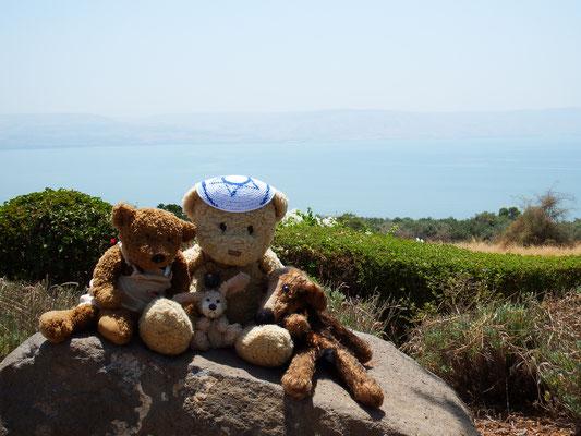 Wir, Kasimir-Cäsar-Fredi und Kerl, am See Genezareth.