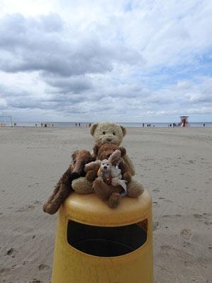 Wir, Kasimir - Cäsar - Fredi und Kerl, am Strand von Parnü, Estland