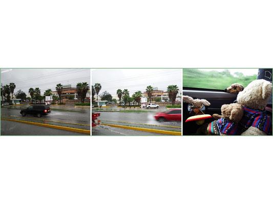 WAS IST DAS?! Regenzeit in Cancun!