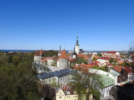 Blick über Tallin