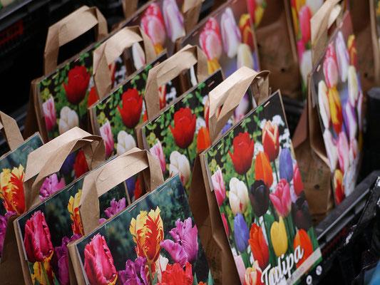 Wir (Kasimir, Cäsar und Fredi) auf dem Tulpenmarkt, Amsterdam