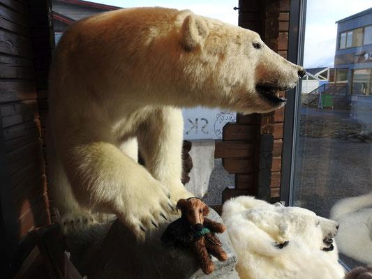 Fredi am Fuße eines ausgestopften Eisbären