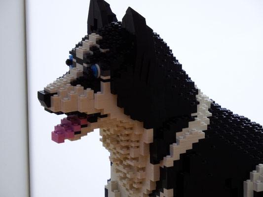 Lego-Husky