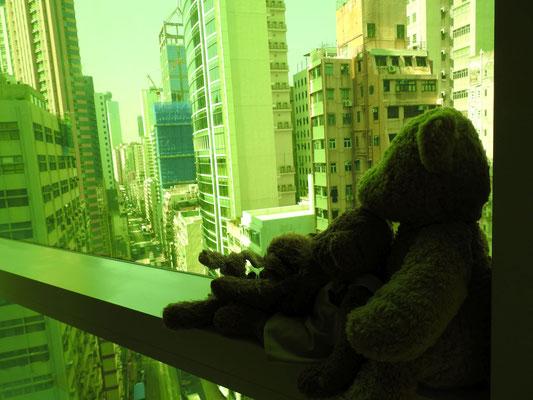 und ebenfalls unser Blick aus unserem Hotelzimmerfenster - boah