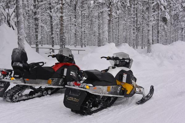 Auch auf der Rentierfarm gab es Schneemobile.