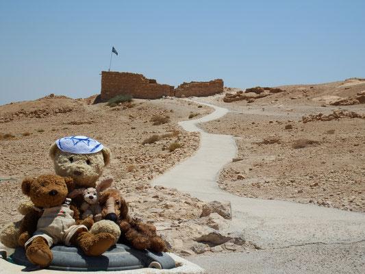 Wir in Masada, einer Festung, die von König Herodes (!) 40 Jahre vor Christi Geburt erbaut wurde.