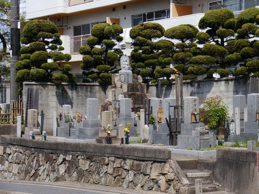 ein Friedhof inmitten von Wohnhäusern am Straßenrand, eingebettet in Vorgärten