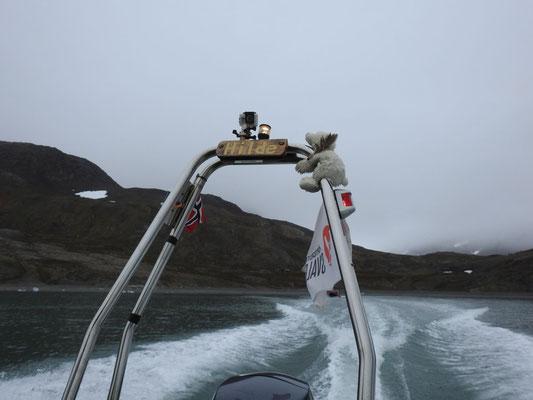 Brrrmmm, mit dem Schnellboot 'Hilde' geht es zurück. Und siehe da, ein Minieisbär fährt mit.