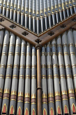Kasimir, Cäsar, Fredi und Kerl bewundern die Orgel in der Kathedrale Arundels