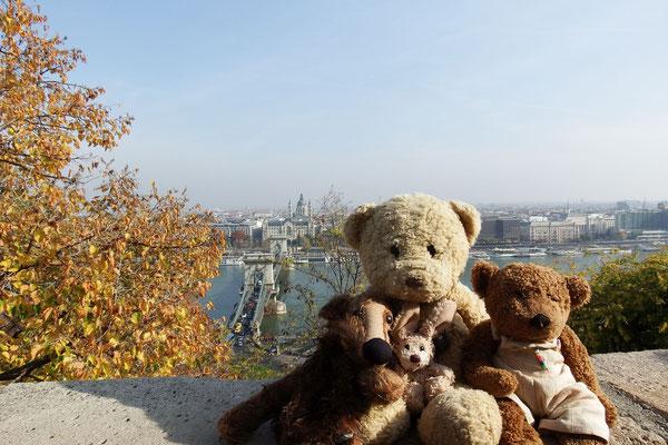 Wir - Kasimir, Cäsar, Fredi und Kerl - mit der Kettenbrücke Budapests im Hintergrund