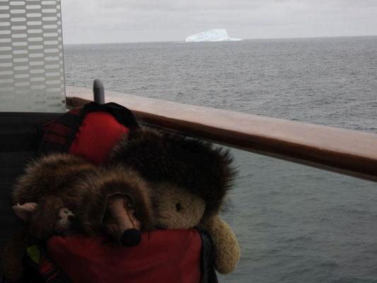 wir - Kasimir, Cäsar, Fredi und Kerl - in der Antarktis