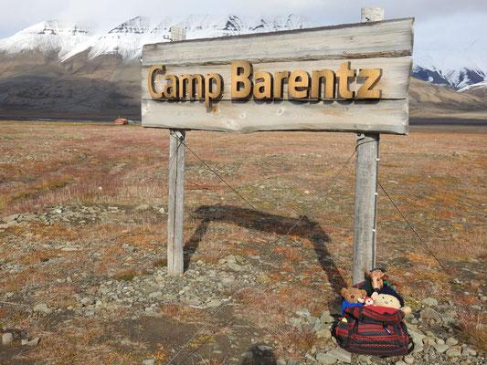 Wie, Kasimir - Cäsar - Fredi und Kerl, im Camp Barentz,einer Huskyfarm in Longyearbyen auf Spitzbergen
