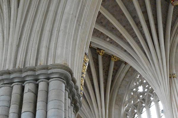 Kasimir, Cäsar, Fredi und Kerl besuchen die Kathedrale von Exeter
