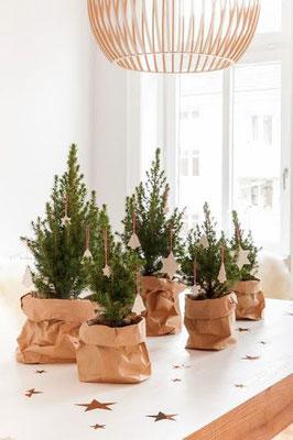 Idées déco de Noël - Green et Minimaliste - Agence Tohana - Ile de la Réunion