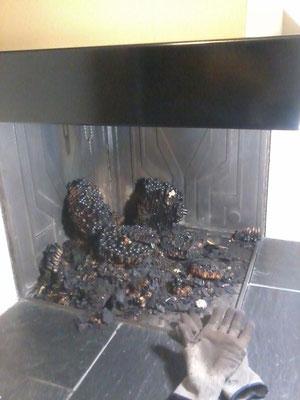 Nidi di Calabroni bruciati