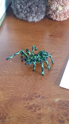 Spinne in Schwarz / Grün