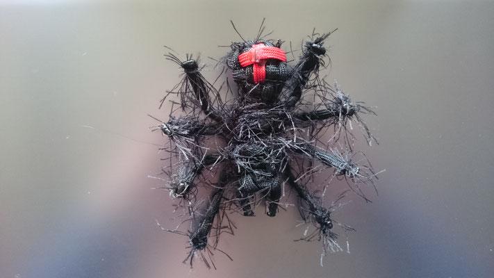 Behaarte Spinne Schwarz mit rotem Kreuz von unten