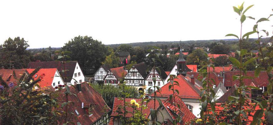 Zwingenberg mit Altstadt