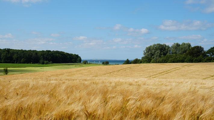 Ostsee, Flensburger Förde, Ohrfeldhaff