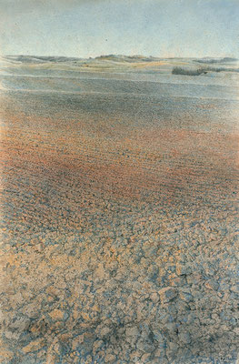 Das Feld II (The Field),70x50cm