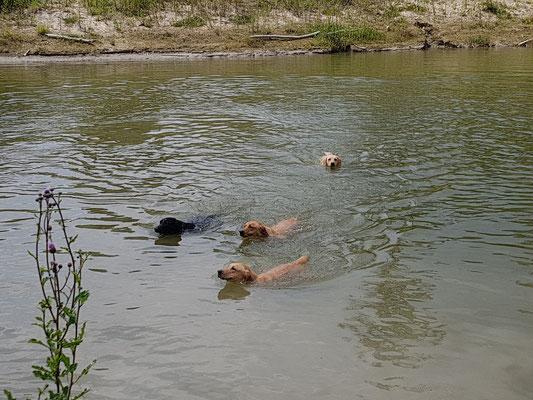 Schwimmtag