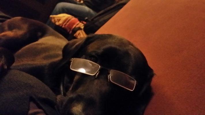 auch Ledger macht sich über die Brille lustig