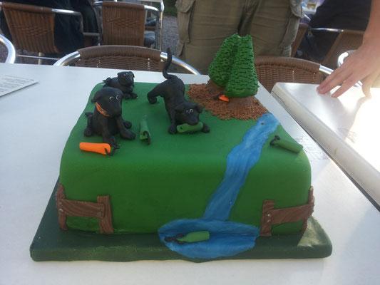 Meine Geburtstagstorte :)