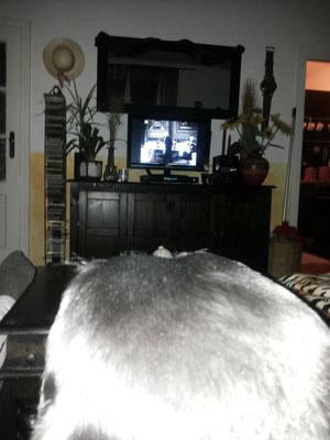 Clark schaut Heidi :)