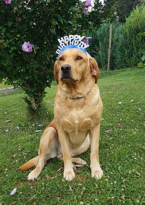 Greta wurde 4 Jahre !!!