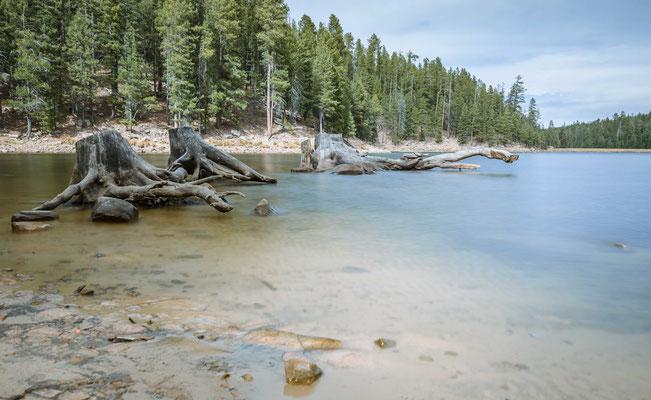 Bear Lake, Mogollon Rim