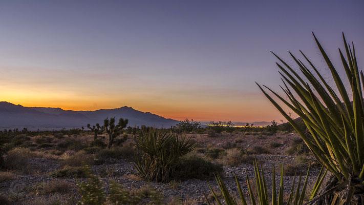 Spring Mountains National Recreation Area, Las Vegas, Nevada