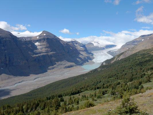 Saskatchewan Glacier Banff NP
