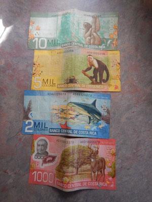 Farbenfrohes costa-ricanisches Geld