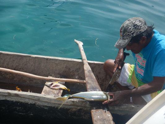 Frischer Fisch...