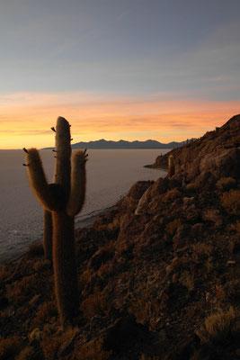 Sonnenaufgang mit Blick auf den Salar