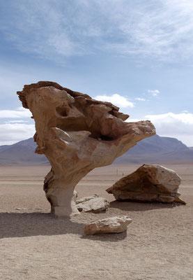 Arból de Piedra