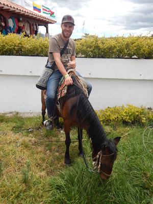 Pferdli in Bobbycar-Grösse