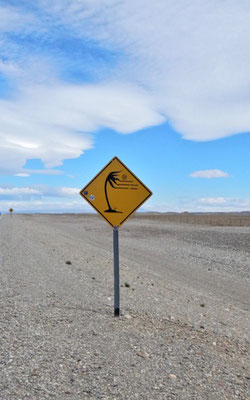 Stürmisches Patagonien