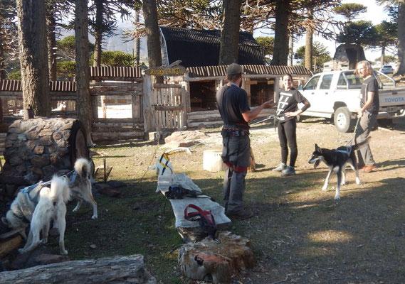 Klettergurt Für Hunde : Aktueller blog claudi und david auf reisen