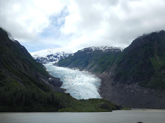 Bear glacier nahe der Meziadin junction