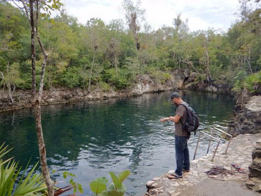 """Cenote """"cueva de los peces"""""""