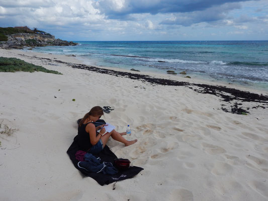 Bloggschreiben am Strand