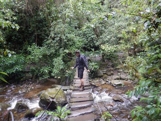 Wanderung zu den Wachspalmen