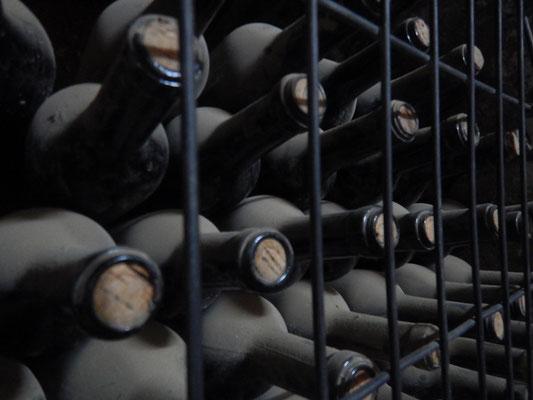 Im Weinkeller von Robert Rodriguez Rodriguez