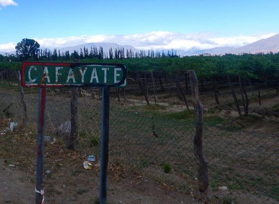Cafayate - das höchstgelegenste Weinanbaugebiet