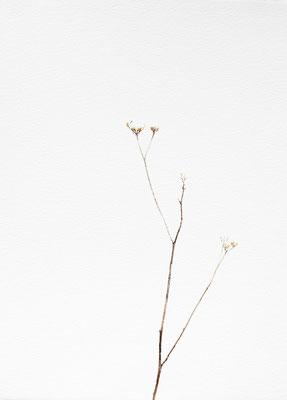 Bianco carta#11 - acquarello su carta - cm 56 x 76 - 2014