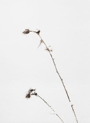 Bianco carta#9 - acquarello su carta - cm 56 x 76 - 2014